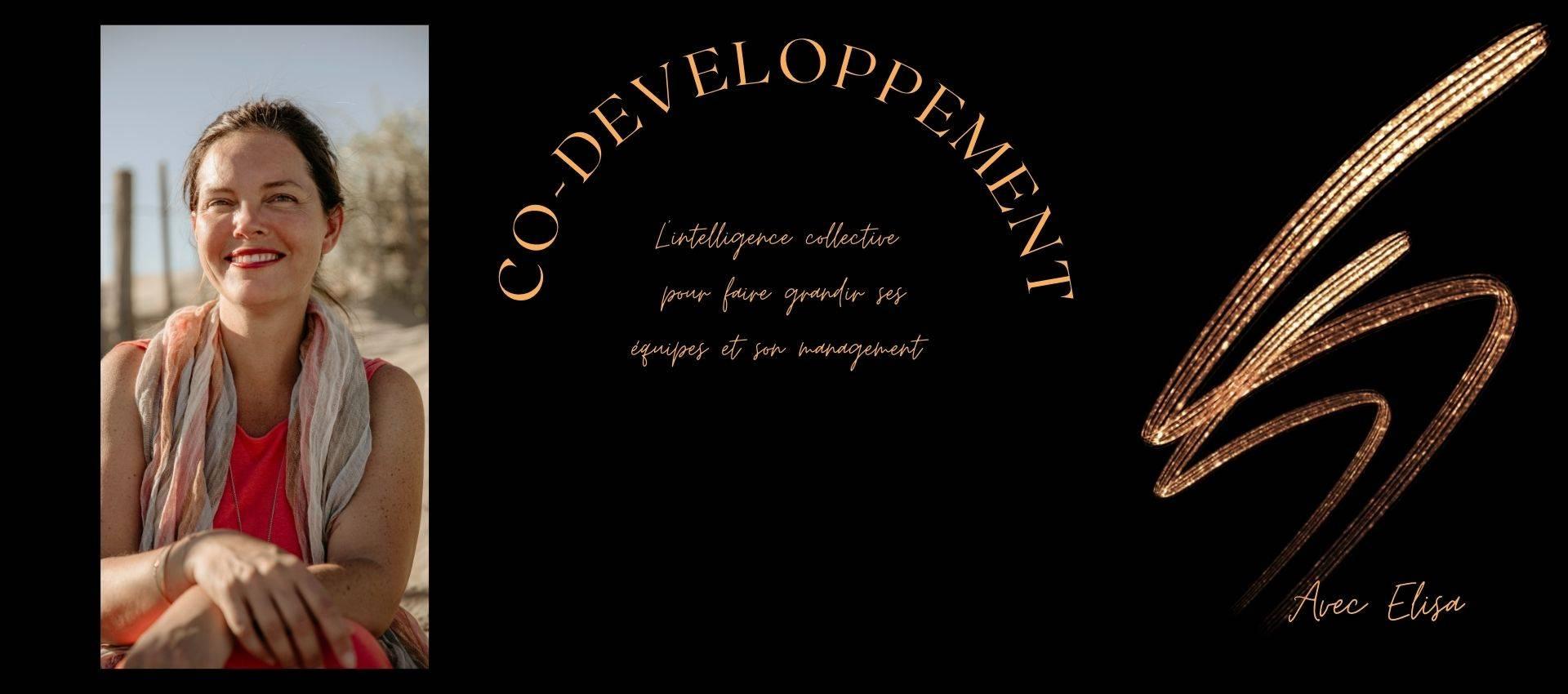 co-développement et formation co-développement