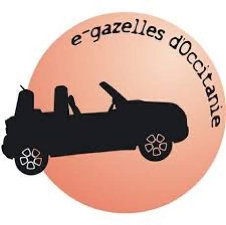 E-gazelles occitanie